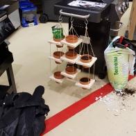 atelier suspension florale